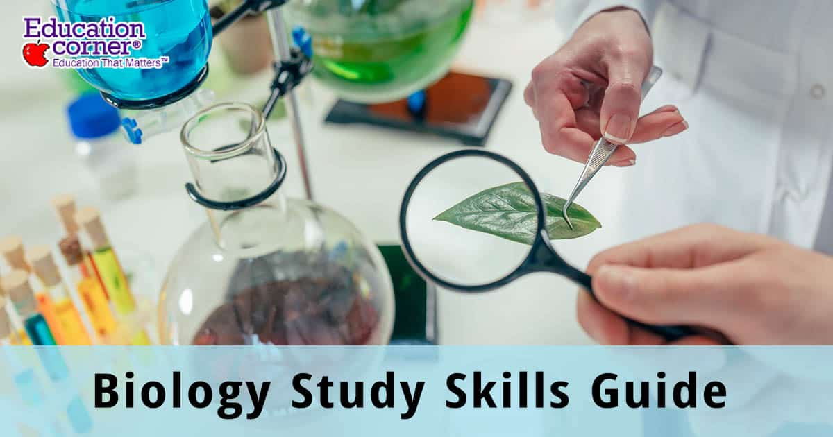 Study Skills: Learn How To Study Biology