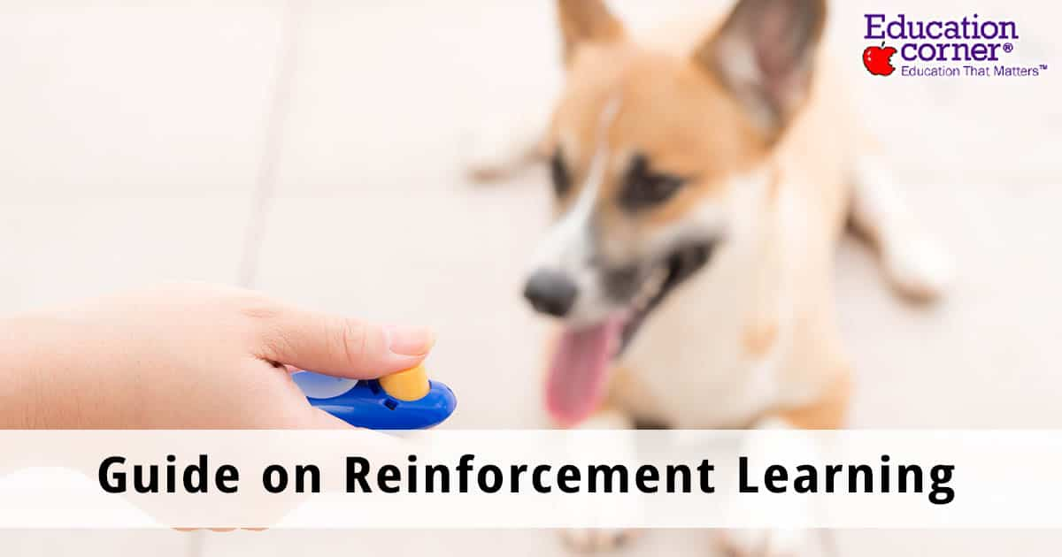 Guide on reinforcement learning