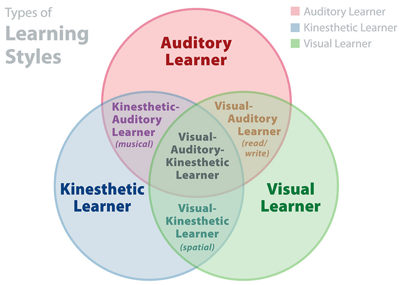 Vark model learning styles venn diagram